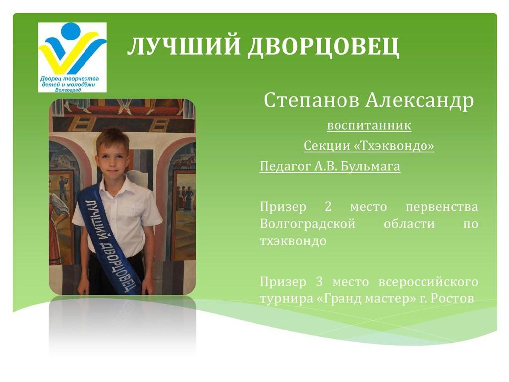 best_dvorcovec_14_15_11